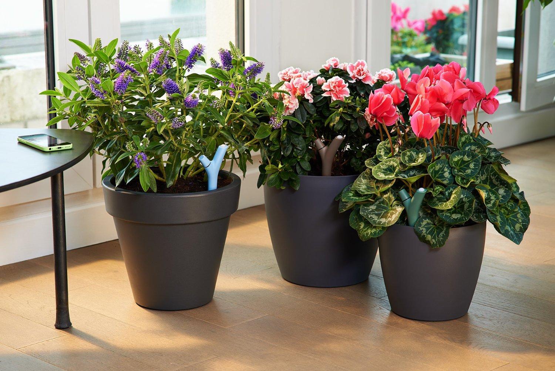 Sensore wireless piante