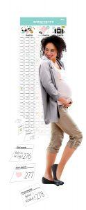 Calendario per futura mamma
