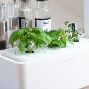 Click&Grow Giardino smart-Dettaglio