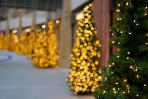 Alberi di Natale