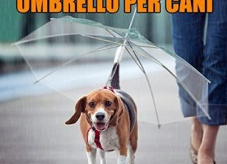 Ombrello per cani